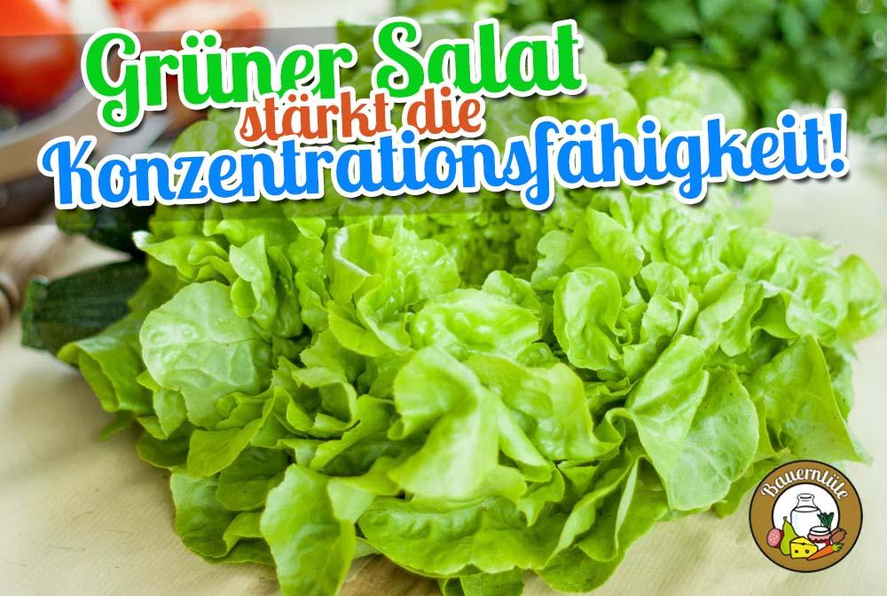 gruener-salat-staerkt-die-konzentrationsfaehigkeit