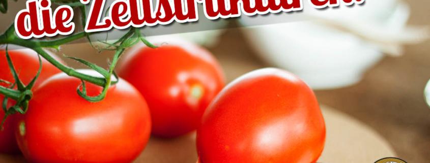 Vitamine, vitaminreiche Lebensmittel mit Tagesbedarf und Ernährungstipps