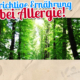 die-richtige-ernaehrung-bei-allergie