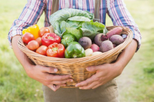 Bio-Lebensmittel kaufen in Köln von Bio-Bauern und Bio-Händlern, sowie Bio-Metzger