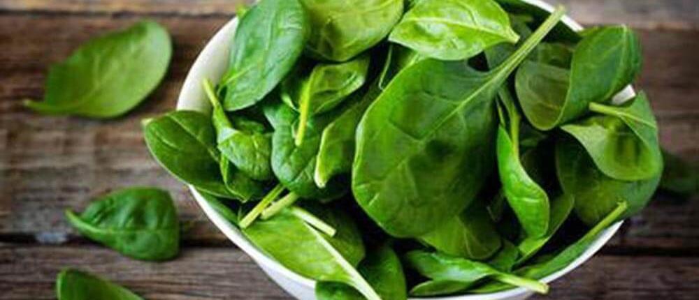 Rezept Spinat überbacken mit Schafskäse