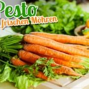 pesto-mit-frischen-moehren