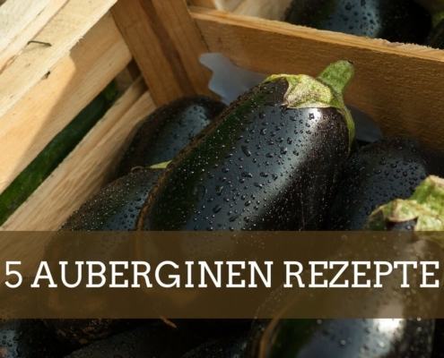 Auberginen Rezepte