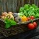 bio Gemüse und Obst