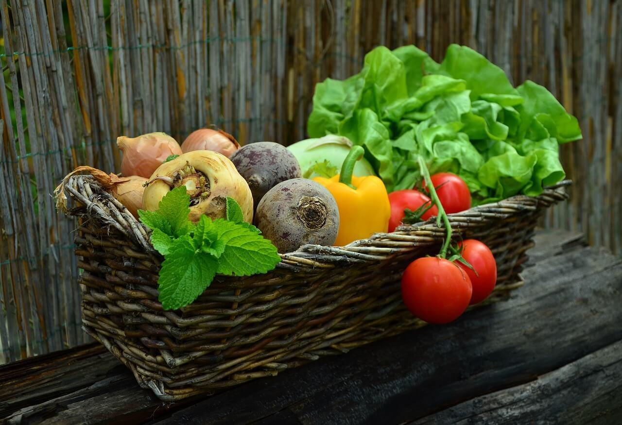 Bio und Regional Gastro