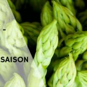 Spargel kochen - Spargel Rezepte für die Spargel Saison