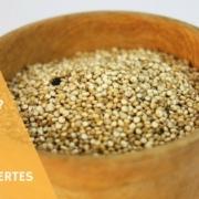 amaranth rezepte fuer amaranth porridge und so weiter