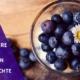 Die Woche der Beeren Heidelbeeren Kalorien und Heidelbeeren sind gesund