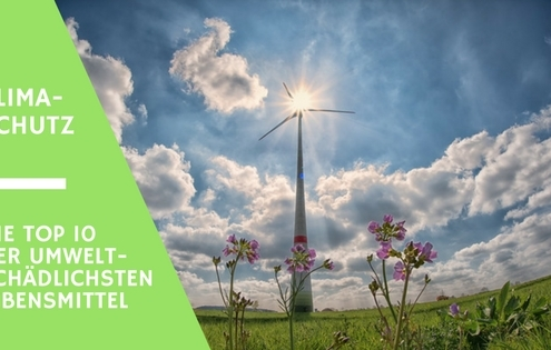 klimaschutz und umweltschutz und was es mit gesunder ernaehrung zu tun hat