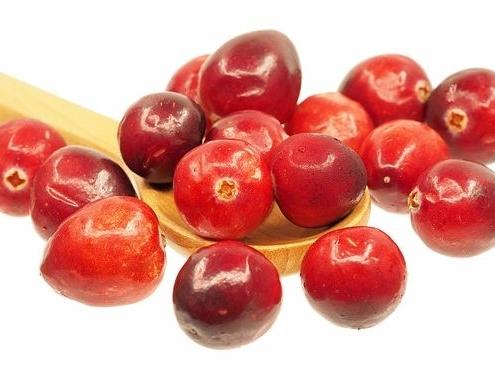 cranberrysaft oder cranberrymarmelade sind lecker und cranberries sind gesund