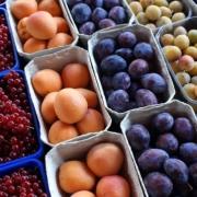 Neurodermitis Früchte