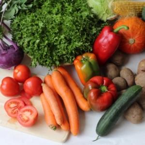 Gemüsekiste-klein
