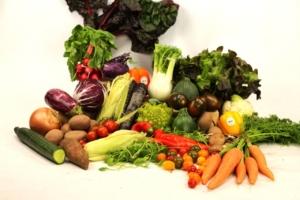 Bio Gemüsekorb liefern lassen
