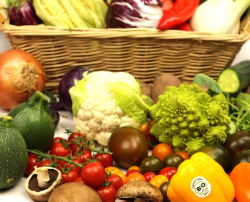 regional bio Gemüse