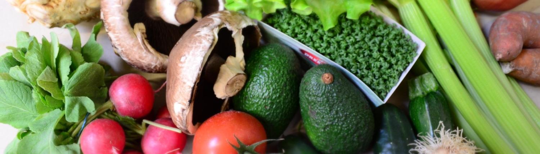 Saisonale Bio Gemüsekiste