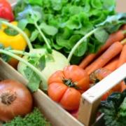 Bio Gemüse online-Gemüsekiste-Gemüseabo