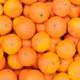 Bio Obst online bestellen - Clementinen im Winter und Frühling