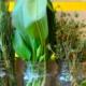 Kraüter-bio-bärlauch-bauerntüte