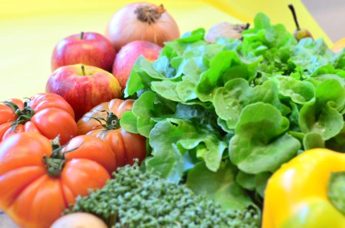 Bio Obst und Gemüse 5-6 Kg
