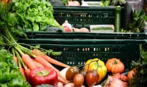 Obst und Gemüse Abos
