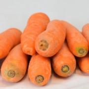 Bio Möhren Bio Karotten