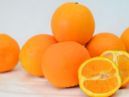 Bio Orangen
