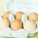 Bio Eier Online kaufen