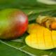 Bio Mango Online bestellen